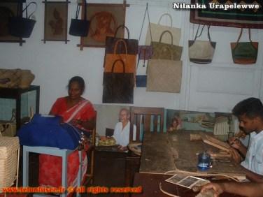 nilanka-urapelewwe-blog-voyage-srilanka-laksala-colombo-travel-blog-telunfusee-4