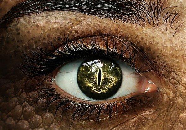 Melihat Penyakit di Mata