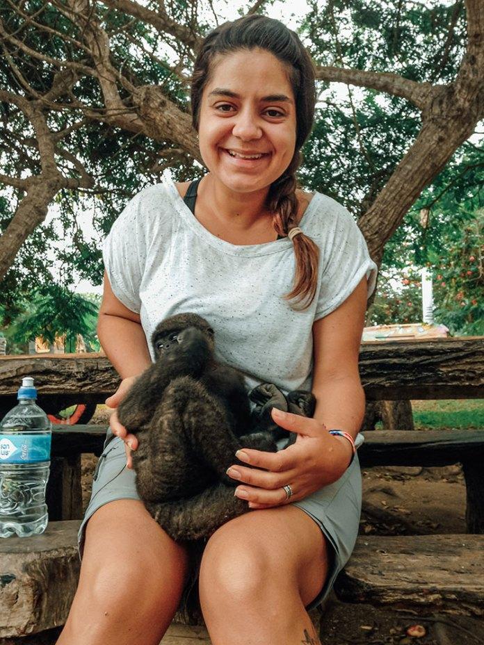 Cuidar dos animais no Eco Truly Park era uma das tarefas diárias dos voluntários
