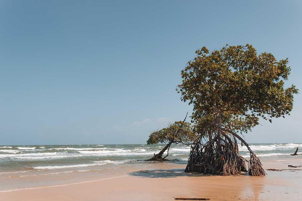 Praia da Barra Velha, a praia mais próxima de Soure na Ilha de Marajó