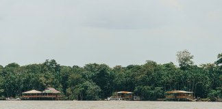 Vista da chegada à ilha do Combu