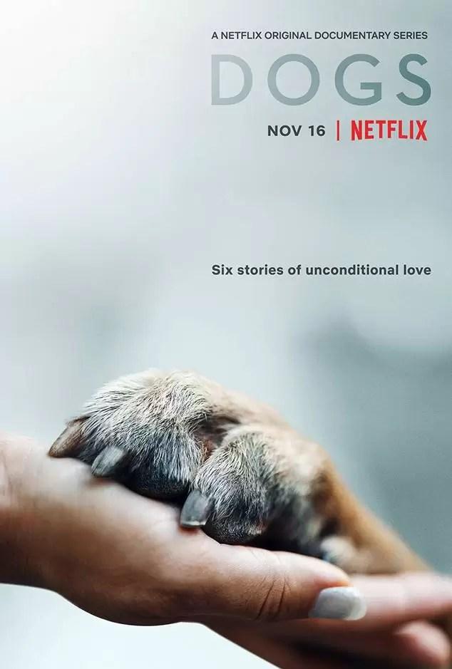 dogs documentário netflix banner