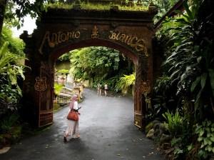 Antonio Blanco Museum