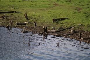 Tepi danau (dok. temansetaman)