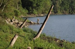 Pemandangan danau (dok. temansetaman)