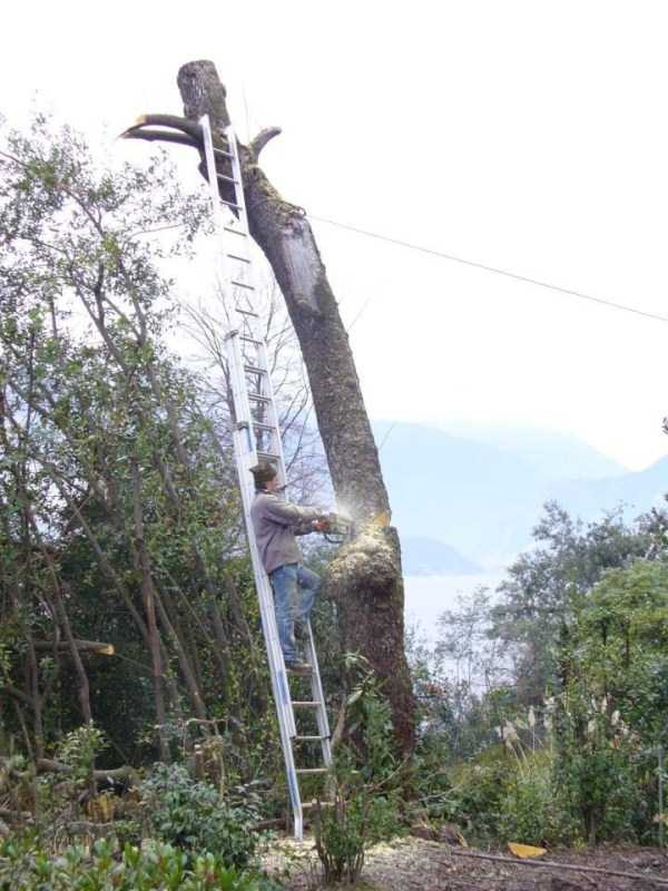 safety-measures-fails-16