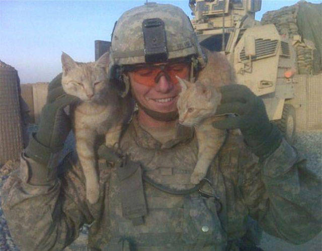 soldiers_share_some_bonding_time_with_cats_640_09
