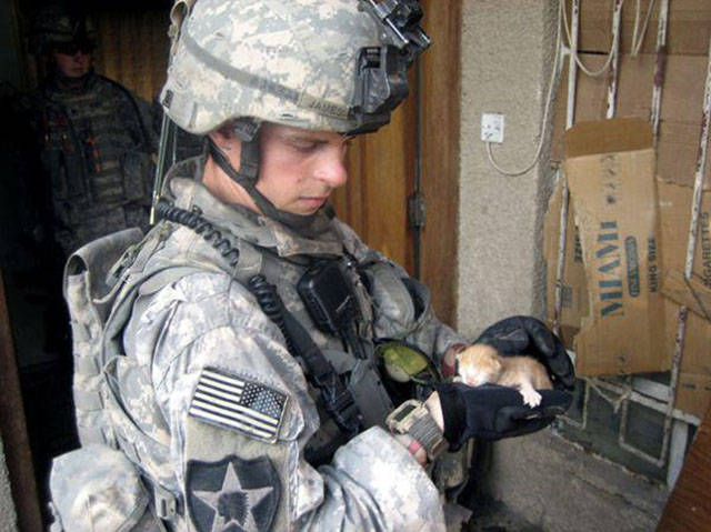 soldiers_share_some_bonding_time_with_cats_640_17