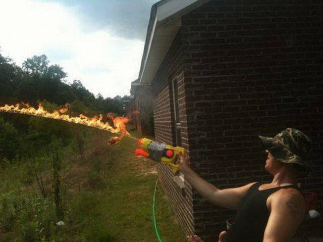 and_the_darwin_award_nominees_are_640_03