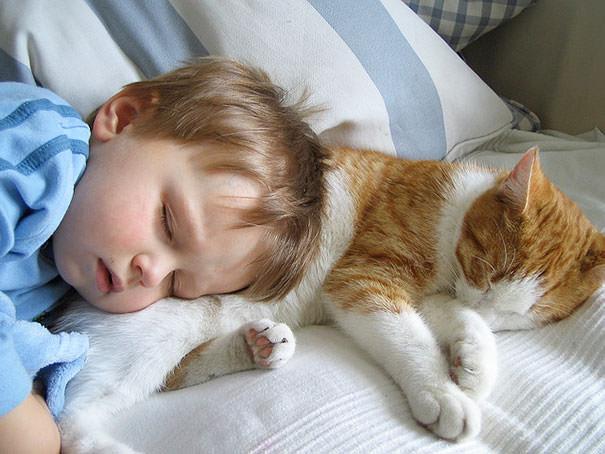 08-ほっこり20枚! 赤ちゃんとネコの仲良しな風景