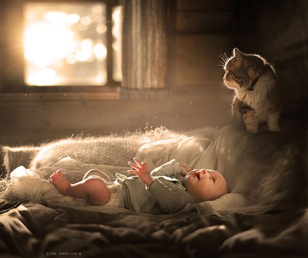 11-ほっこり20枚! 赤ちゃんとネコの仲良しな風景