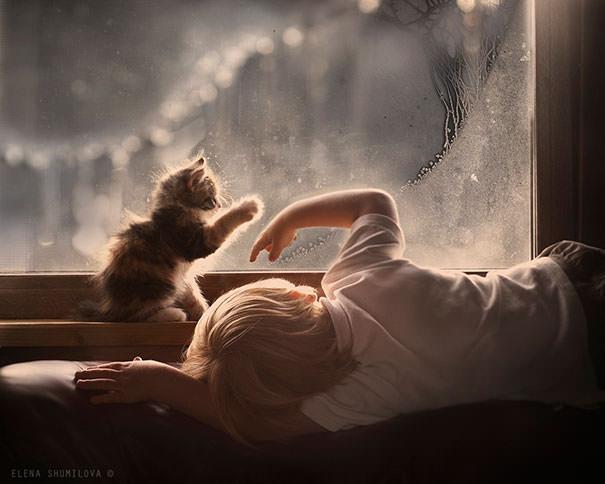 13-ほっこり20枚! 赤ちゃんとネコの仲良しな風景