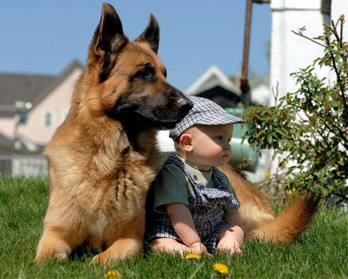 every-kids-need-pets-36__700