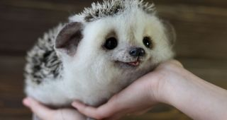 adorable-little-animals-that-i-make-from-wool__880