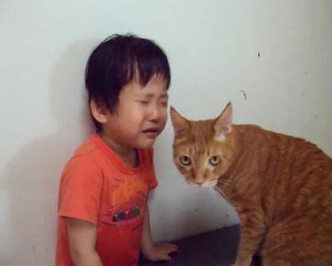 03目の前に泣き止まない少年!ネコさんの取った行動が魔法のような効果を発揮する!