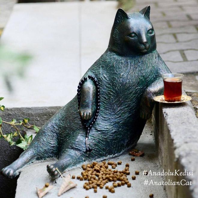 famous-cat5
