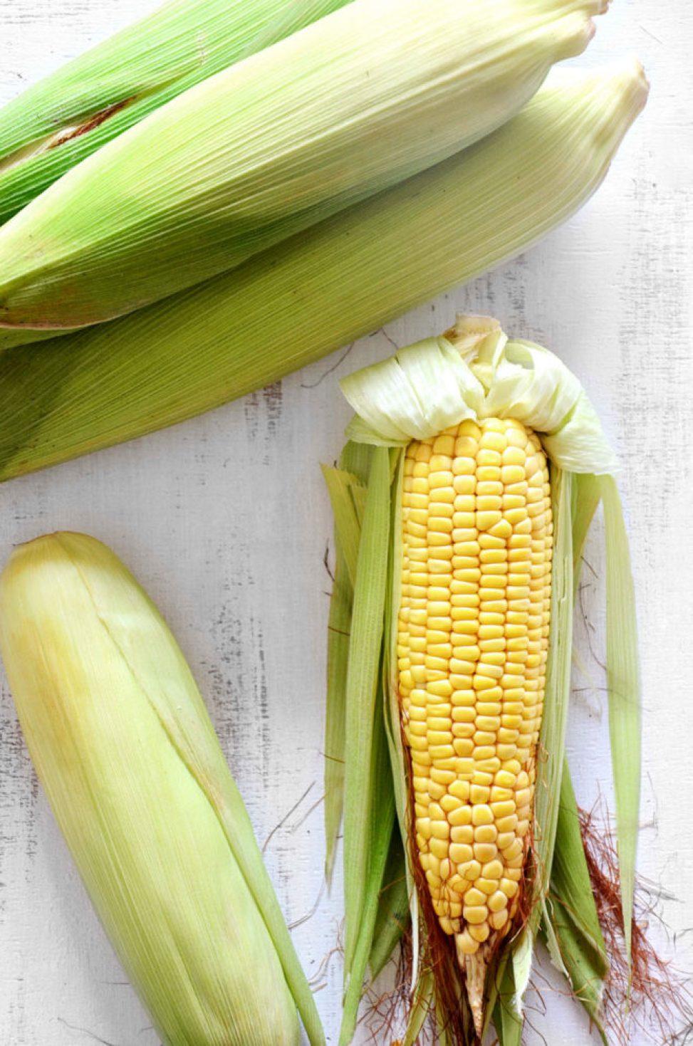 espiga milho