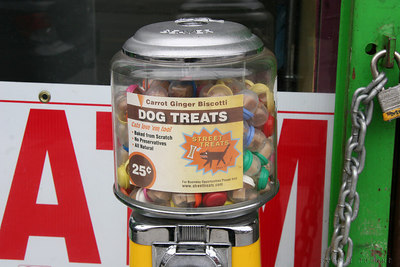 dog treats outside foodswings