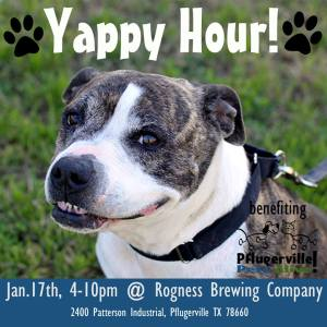 Rogness - Yappy Hour