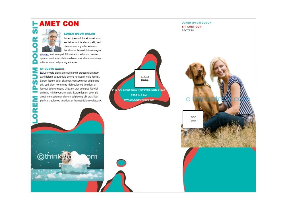 Doc770477 Brochure Template Free Download Microsoft Word Free – Brochure Templates Word Free Download