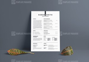 Sharp Vector Resume CV Design