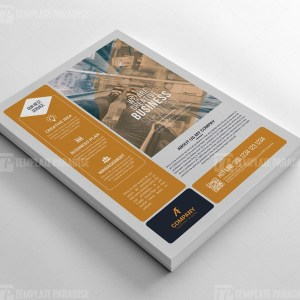 Company Business Flyer Templates