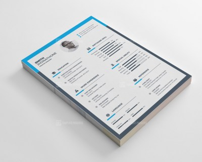 Excellent Resume CV Design Templates