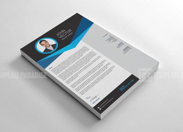 Academic Resume CV Design