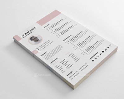 Salmon Resume CV Design