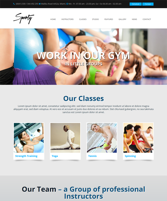 sporty sport wordpress theme