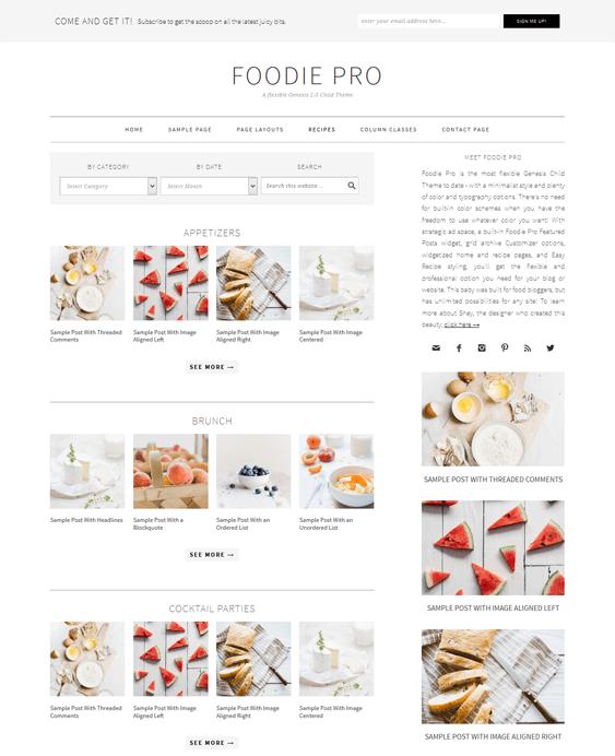 foodie pro recipe food wordpress theme