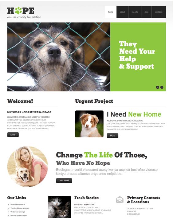 clear charity nonprofit wordpress themes