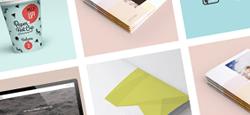 more best drupal portfolio themes feature