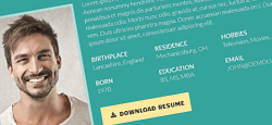 more best resume cv wordpress themes feature