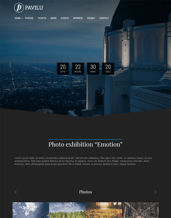 pavilu dark wordpress themes