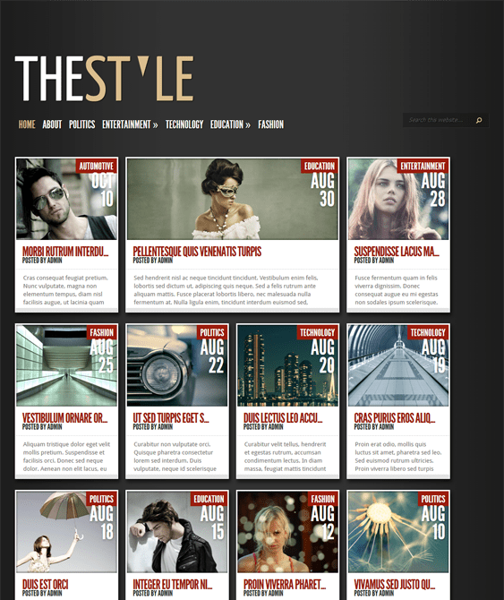 thestyle dark wordpress themes