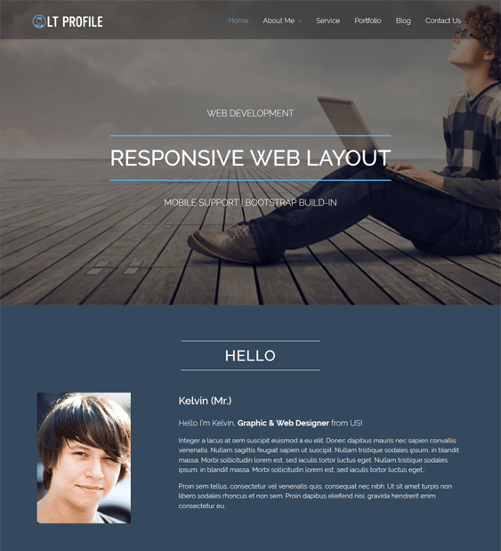 lt profile cv resume wordpress themes