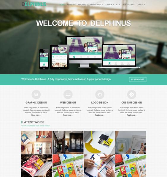 delphinus portfolio joomla templates