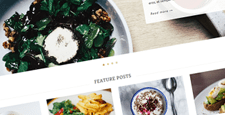 more best food recipe wordpress themes feature