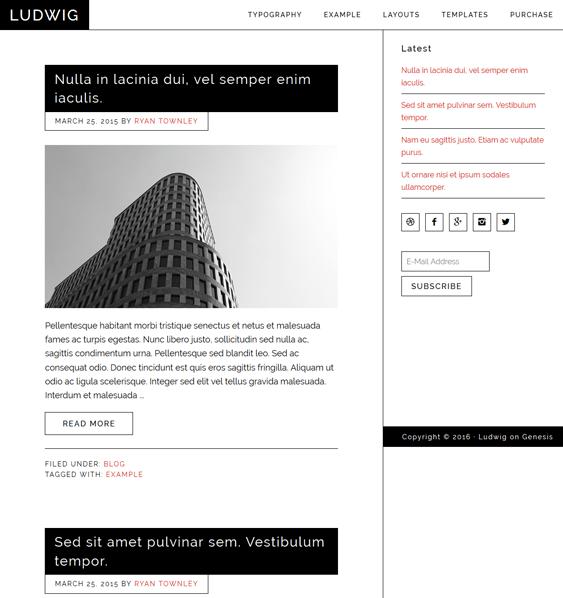 ludwig minimal wordpress themes