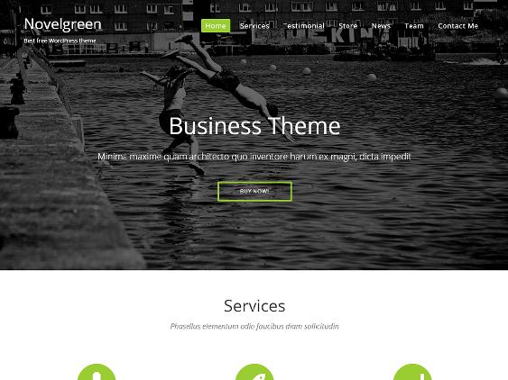 novel green free one page wordpress themes