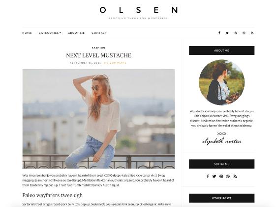 olsen free minimal wordpress themes