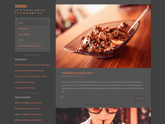 storto free dark wordpress themes