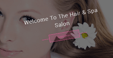 best beauty salons spas wordpress themes feature