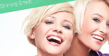 best bootstrap website templates feature dental clinics dentists