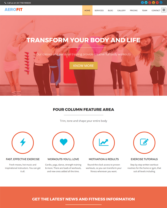 aerofit gym fitness wordpress themes