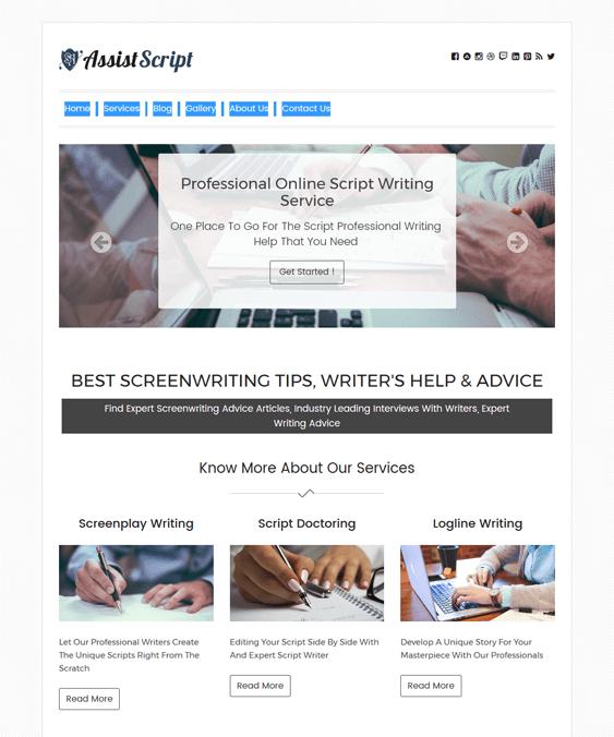 assistscript writer author wordpress themes