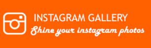 instagram insta feeds shopify apps plugins