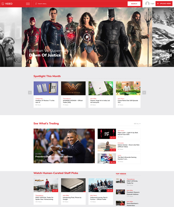 vivo wordpress themes video websites