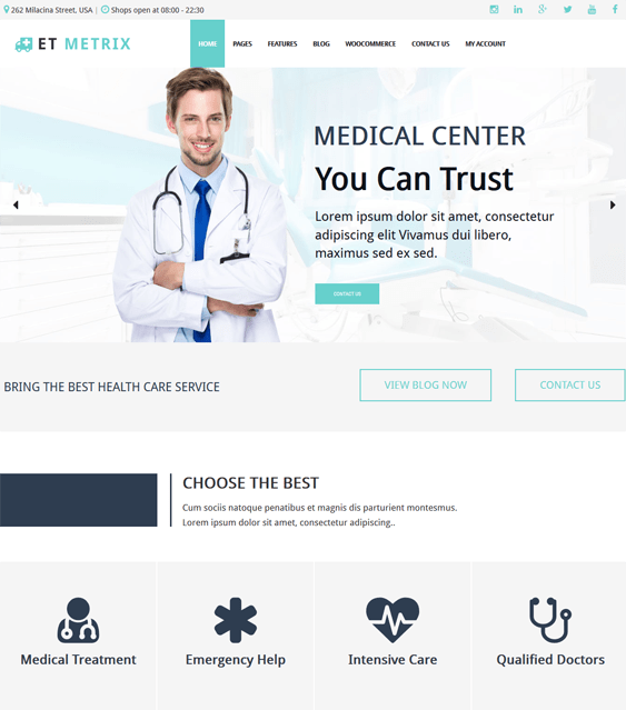 et metrix medical wordpress themes